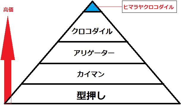 ワニ革ピラミッド